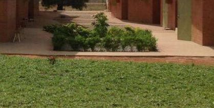 Beginn der Gartenanlage um unsere Klinik